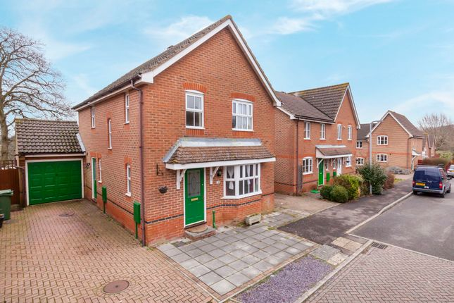 Thumbnail Detached house for sale in Redwell Avenue, Bexhill-On-Sea, East Sussex