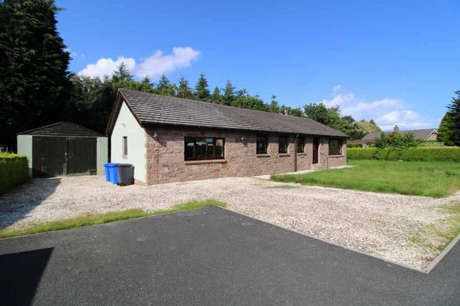 Thumbnail Detached bungalow for sale in Warenford, Nr Belford, Northumberland