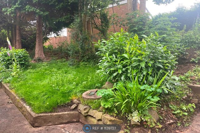 2 bed detached house to rent in Meadowbank, Newent GL18