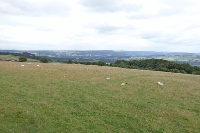 Thumbnail Land for sale in Land At Longstone Edge, Great Longstone, Bakewell