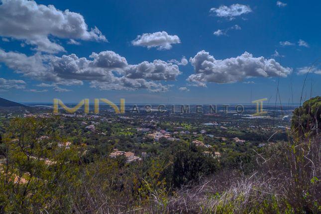 Thumbnail Land for sale in Pé Do Cerro, Santa Bárbara De Nexe, Faro, East Algarve, Portugal