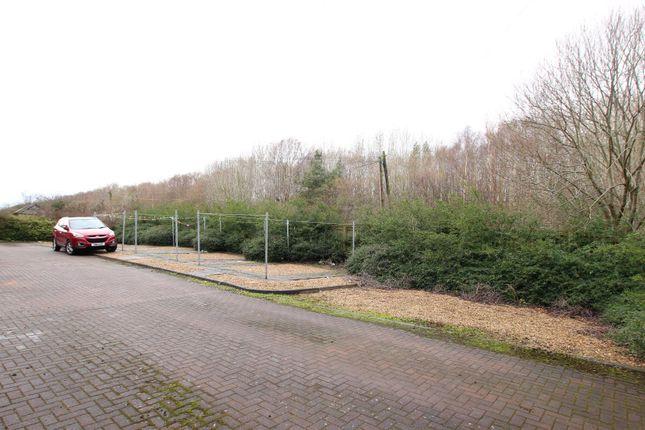 Rear External of Holytown Road, Bellshill ML4