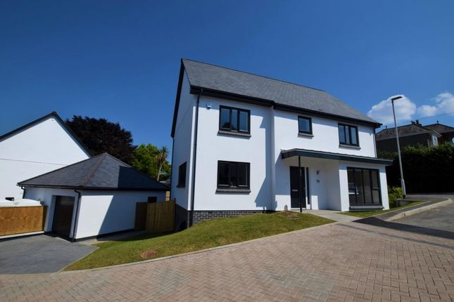 Thumbnail Detached house for sale in Mount Pleasant, Hill Lane, Plymouth, Devon