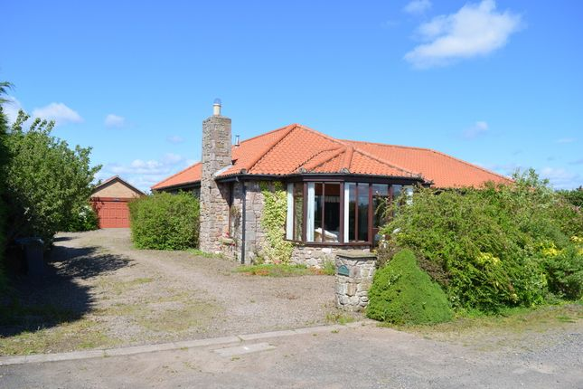 Thumbnail Bungalow for sale in Unthank, Berwick Upon Tweed, Northumberland