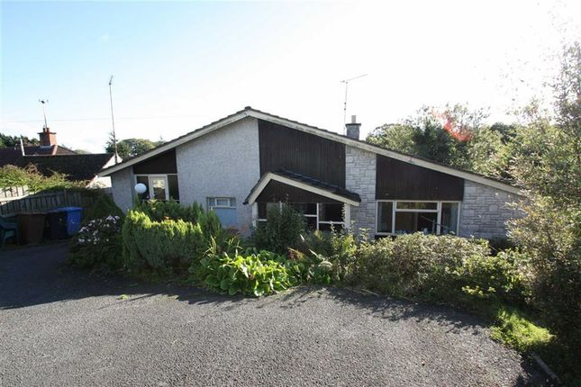 Thumbnail Detached bungalow for sale in Church Road, Ballynahinch, Down