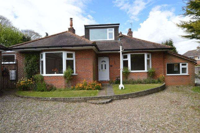 Thumbnail Property for sale in Blofield Road, Brundall, Norwich