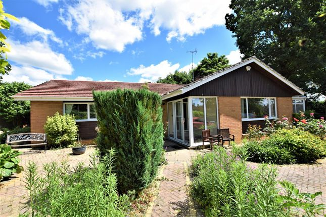 Thumbnail Detached bungalow to rent in Peterborough Avenue, Oakham