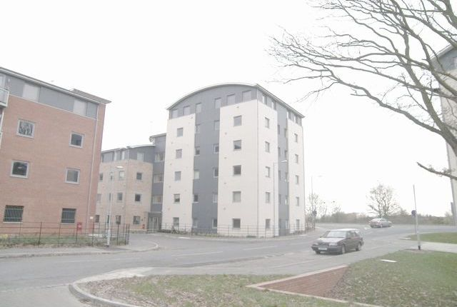 Thumbnail Studio to rent in De Grey Road, Colchester, Essex