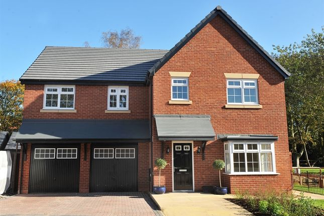 "Thumbnail Detached house for sale in ""The Turner"" at Lightfoot Green Lane, Lightfoot Green, Preston"