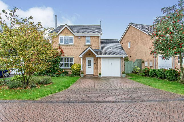 Thumbnail Detached house for sale in Bracon Close, Belton, Doncaster, Lincolnshire