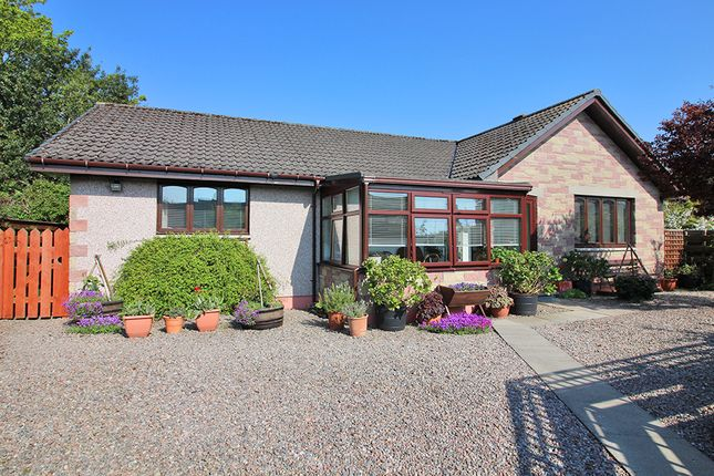 Thumbnail Detached bungalow for sale in Ballifeary Road, Inverness