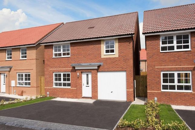 "Thumbnail Detached house for sale in ""Windermere"" at Shackleton Close, Whitby"