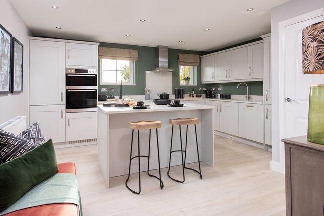 Park Edge Alderney Show Home Kitchen