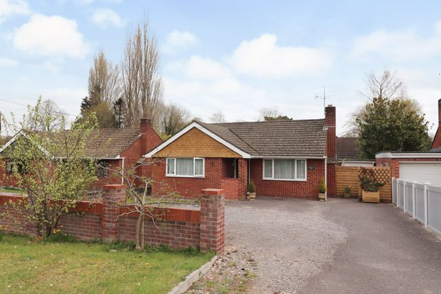 Thumbnail Detached bungalow for sale in Shore Lane, Bishops Waltham, Southampton