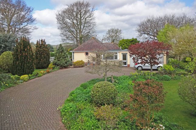 Thumbnail Detached bungalow for sale in Oak Hill, East Budleigh, Budleigh Salterton