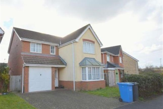 Thumbnail Property to rent in Bladewater Road, Norwich