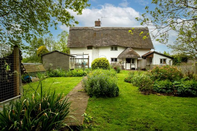 Thumbnail Cottage for sale in Mill Green, Burston, Diss