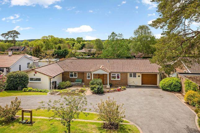 Thumbnail Detached bungalow for sale in Nyetimber Copse, West Chiltington, West Sussex