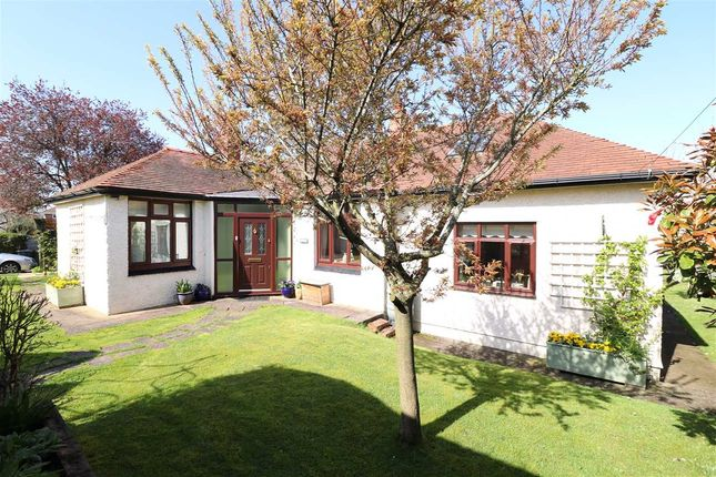 Thumbnail Detached bungalow for sale in Conifers, Hildersley Rise, Ross-On-Wye