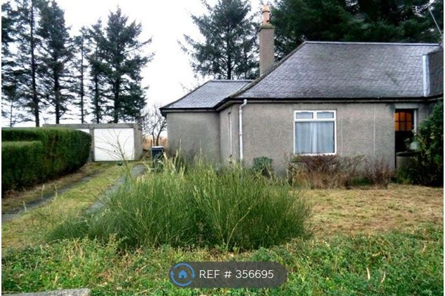 Thumbnail Bungalow to rent in Walton Road, Bucksburn, Aberdeen