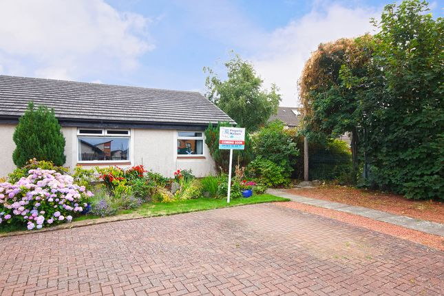 Thumbnail Semi-detached bungalow for sale in Green Avenue, Irvine