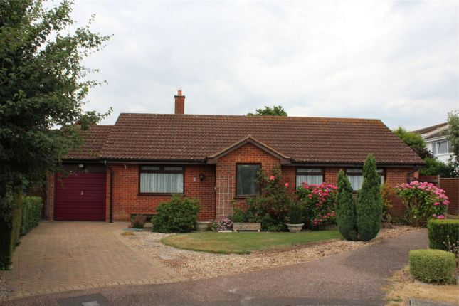 Thumbnail Detached bungalow to rent in Caray Grove, Creech St Michael, Somerset