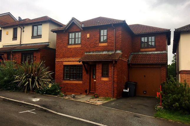 Thumbnail Property to rent in Tallow Wood Close, Paignton