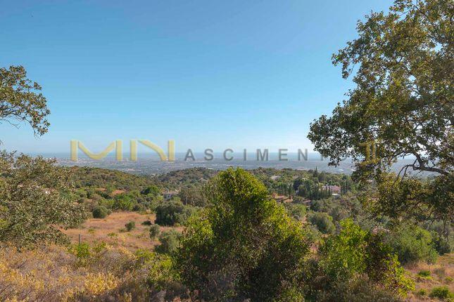 Thumbnail Farm for sale in Agostos, Santa Bárbara De Nexe, Faro, East Algarve, Portugal
