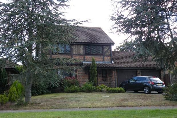 Thumbnail Property to rent in Ivy Drive, Lightwater