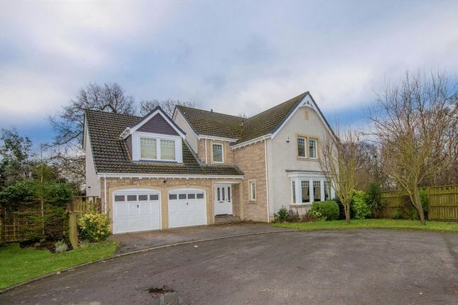 Thumbnail Detached house for sale in Adia Road, Torryburn, Dunfermline