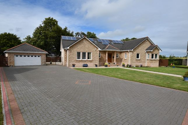 Thumbnail Detached bungalow for sale in Kellieside Park Milnathort, Kinross