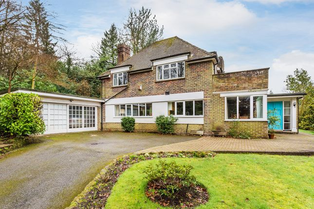 Thumbnail Detached house for sale in Hollow Lane, Dormansland, Lingfield