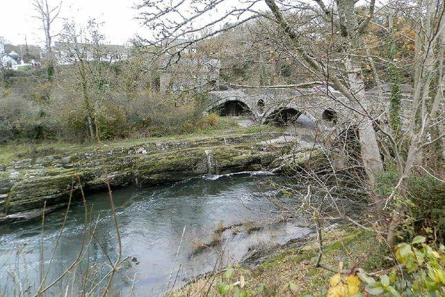 View Of Bridge From Gardens