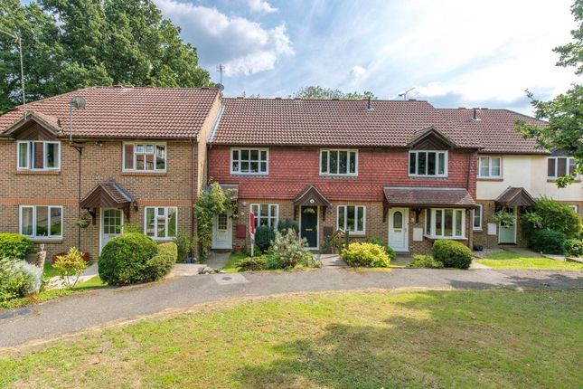 Thumbnail Property to rent in Mulberry Way, Heathfield