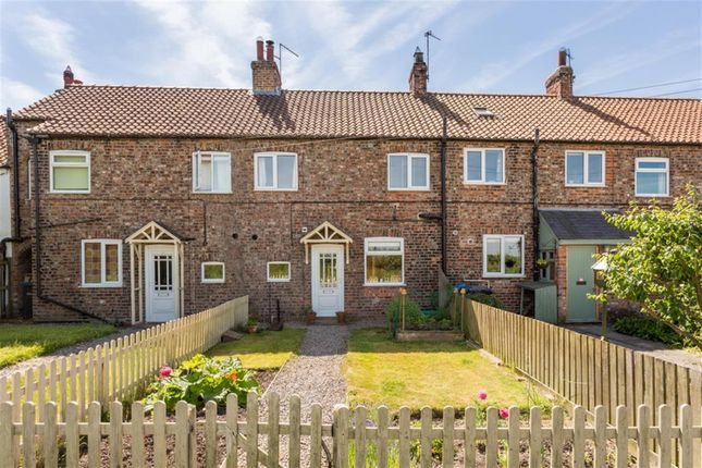 Thumbnail Terraced house for sale in Moor Lane, Shipton By Beningbrough, York