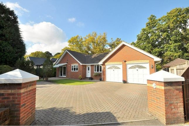 Thumbnail Detached bungalow for sale in Golf Links Road, Ferndown