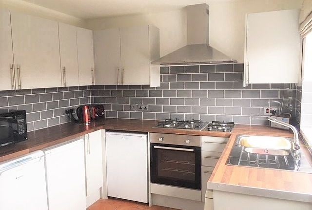 Thumbnail Property to rent in Finsbury Terrace, Brynmill, Swansea