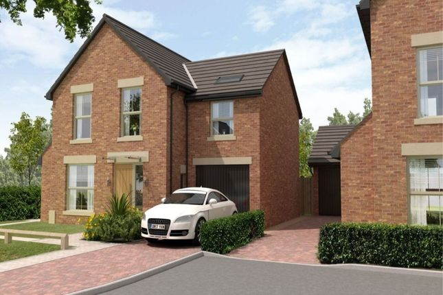Thumbnail Detached house for sale in Holly Grove, Thorpe Willoughby, Selby