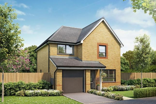 """Thumbnail Detached house for sale in """"Denby"""" at Highfield Lane, Rotherham"""