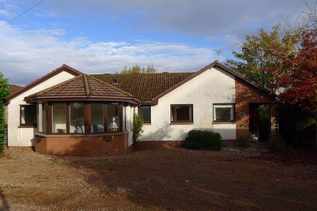 4 bed bungalow to rent in Almbank, Gladney, Ceres KY15
