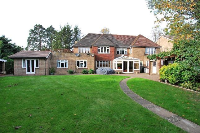 Thumbnail Detached house for sale in Golden Manor, Hanwell, London