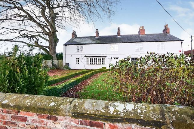 Thumbnail Semi-detached house to rent in Kirk Hammerton, York