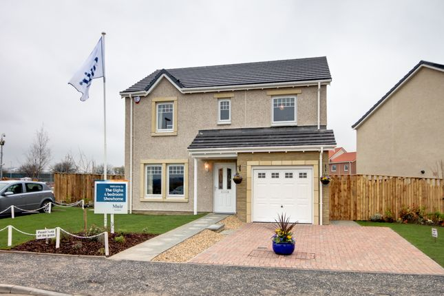 Thumbnail Detached house for sale in Lyall Way, Laurencekirk