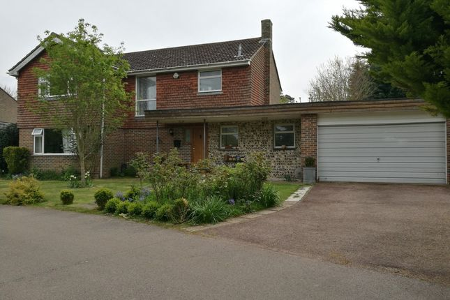 Thumbnail Detached house for sale in Badgers Dene, Mill Lane, Lewes, East Sussex