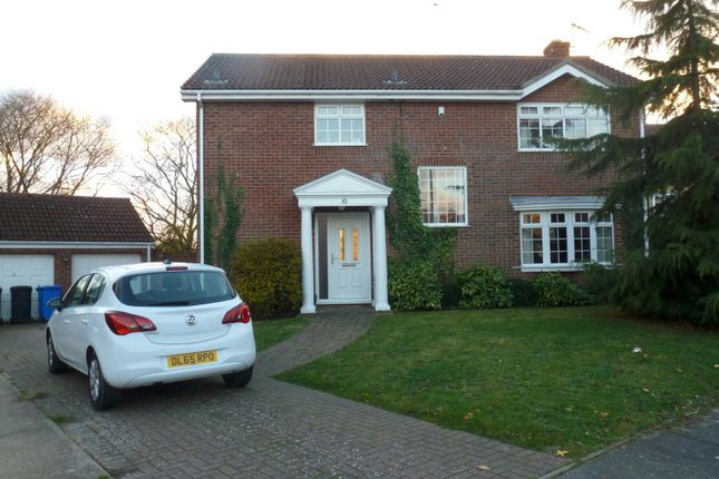 Thumbnail Detached house to rent in Ninfield Close, Carlton Colville, Lowestoft