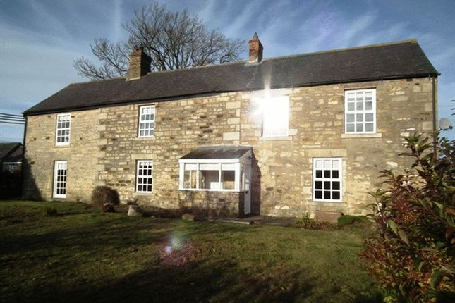 Thumbnail Detached house to rent in Mitford, Morpeth