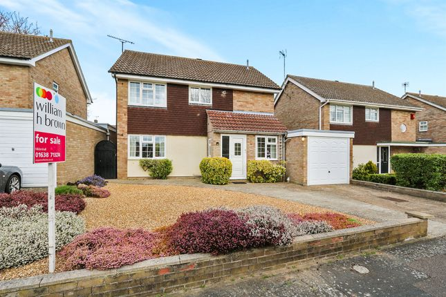 Thumbnail Detached house for sale in Turnstone Close, Mildenhall, Bury St. Edmunds