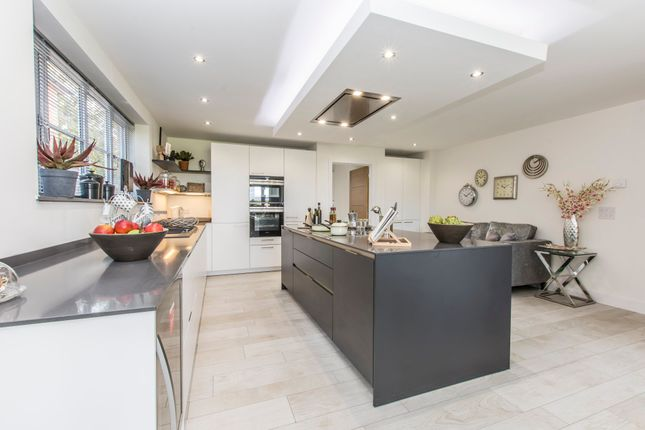 Thumbnail Detached house for sale in Pound Lane, Burghclere, Newbury