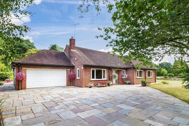 Thumbnail Detached bungalow for sale in Middle Lane, Congleton