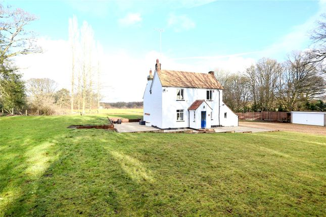 Thumbnail Detached house for sale in Standford Lane, Standford, Hampshire